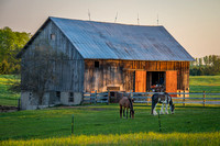 Two Horses and a Barn