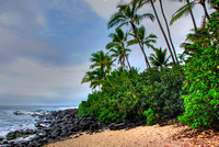 North Shore #2 - Hawaii